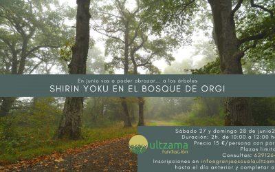 Shirin Yoku en el Bosque de Orgi